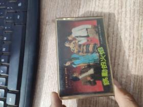 磁带:跳动的火焰(50首迪斯科歌曲联唱)【唱片微花,无机器试片,不知音质,介意者勿下单,请谅】