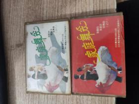 磁带:家庭舞会 6(中华名曲精品)+8(秀歌曲音乐选)【2盘合售】【唱片微花,无机器试片,不知音质,介意者勿下单,请谅】