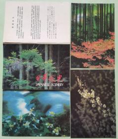明信片-日本风光(10全)春夏秋冬、彬林、睡莲、胡枝、落叶、