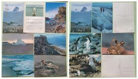 明信片-南极风光(10全)浮冰、乔治岛海湾、海豹、企鹅、纳尔逊岛、海燕