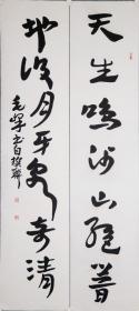 四川省书协副主席,中国书法研究院常务理事【毛峰】书法对联