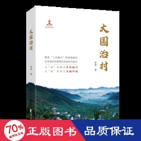 治村/李英 杂文 李英 新华正版