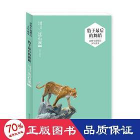 动物小说精品少年读本——豹子最后的舞蹈