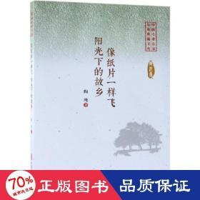 像纸片一样飞:阳光下的故乡中国专业作家小说典藏文库