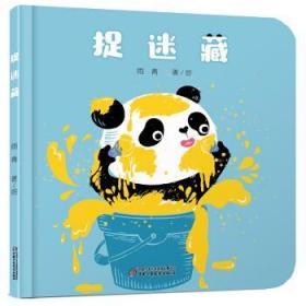 捉迷藏  雨青 著  中国少年儿童新闻出版总社