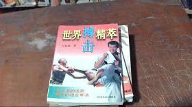 世界搏击精粹(2册合售)