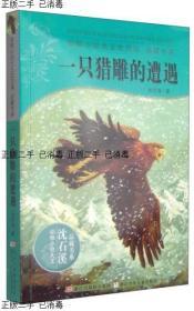 ~发货快~动物小说大王沈石溪·品藏书系·一只猎雕的遭遇沈石溪