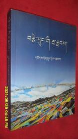 爱的浪花(藏文)