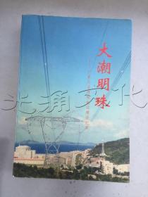 大潮明珠广东大亚湾核电站建设纪实