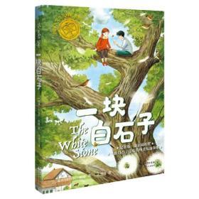 国际大奖少儿成长书系:一块白石子(儿童小说)