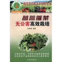 苘蒿蕹菜无公害高效栽培