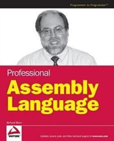 Professional Assembly Language-专业汇编语言