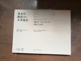黄永砅 蛇杖Ⅲ:左开道岔
