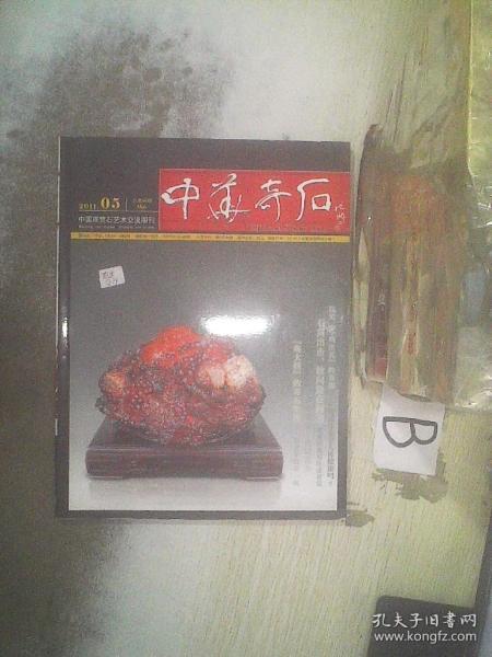 中华奇石2011 5   .