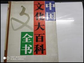 X108657 中国文化大百科全书 综合卷(上册)书脊有点破损