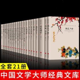 全新 中国文学大师经典文库合集  全21册     文学小说精选正版书籍图书