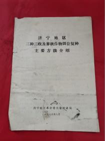 济宁地区三种三收及麦秋作物间套复种主要方法介绍