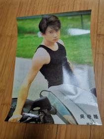 90年代怀旧明星海报贴画:吴奇隆