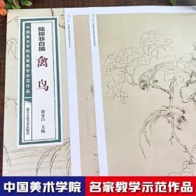 陆抑非白描·禽鸟/中国美术学院名家教学示范作品