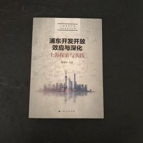 浦东开发开放效应与深化:上海探索与实践
