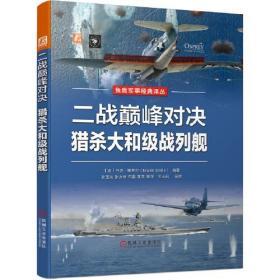 二战巅峰对决 猎杀大和级战列舰