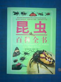 昆虫百科全书 没哟有写画