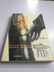 回家:当代中国人情感口述实录之二