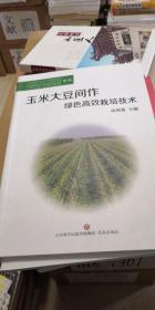 玉米大豆间作绿色高效栽培技术