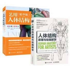 【组套两册】人体结构原理与绘画教学+艺用人体结构 贵哥推荐 伯里曼人体结构绘画教学艺用人体解剖游戏