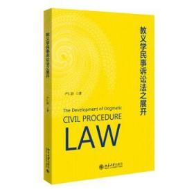 正版 2021新书 教义学民事诉讼法之展开 严仁群 社科法学 法教义学 教义学与解释论 抽象的诉权