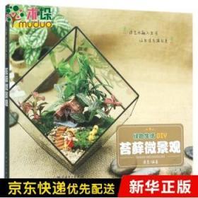 苔藓微景观(绿色生活DIY)