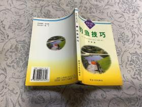 钓鱼技巧(休闲文化书库)