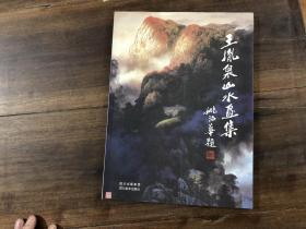 王胤泉山水画集