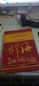 现代汉语 辞海(最新修订版)2