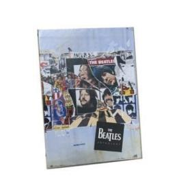 The Beatles 披头士 5DVD