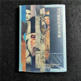 当代摄影的多元突破:摄影观察丛书