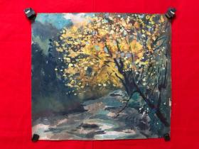 书画13587,水粉水彩画,阿坝米亚罗,尺寸约为43*39厘米