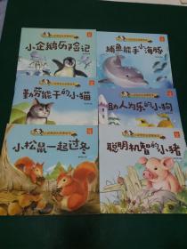 小动物成长故事绘本【注音本6本】小松鼠一起过冬。聪明机智的小猪。助人为乐的小狗。捕鱼能手小海豚。勤劳能干的小猫。小企鹅历险记】后附手工制作方式