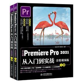 pr教程书籍 中文版Premiere Pro2021从入门到实战adobe Premie