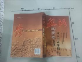 血路 : 战火中走来的杨罗耿兵团