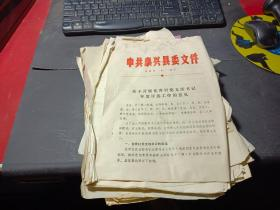 中共泰兴县委文件(比较杂乱  也有其他的 一起合售)