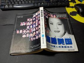 遭遇美国――陈燕妮采访录:50个中国人的美国经历(下册)   无字迹