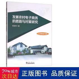 发展农村电子商务的思路与对策研究:以河南省为例