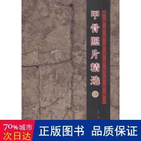 甲骨照片精选(1)/殷墟甲骨文书体分类萃编