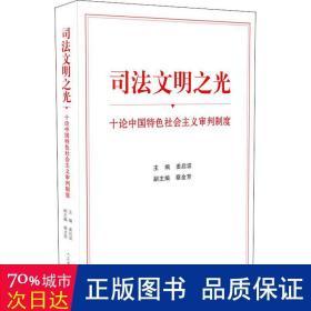 司法文明之光(十论中国特色社会主义审判制度)
