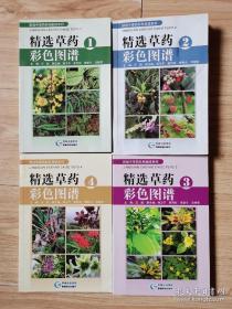 精选草药彩色图谱 1、2、3、4合售