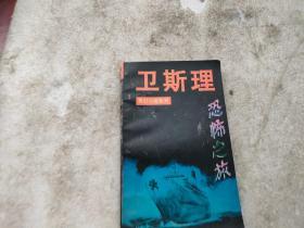 卫斯理灵幻小说系列:恐怖之旅