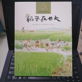 纯美自然图画书衣:稻子在长大