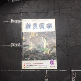 新民围棋 1999.6