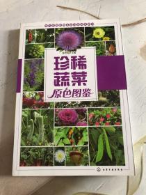珍稀蔬菜原色图鉴